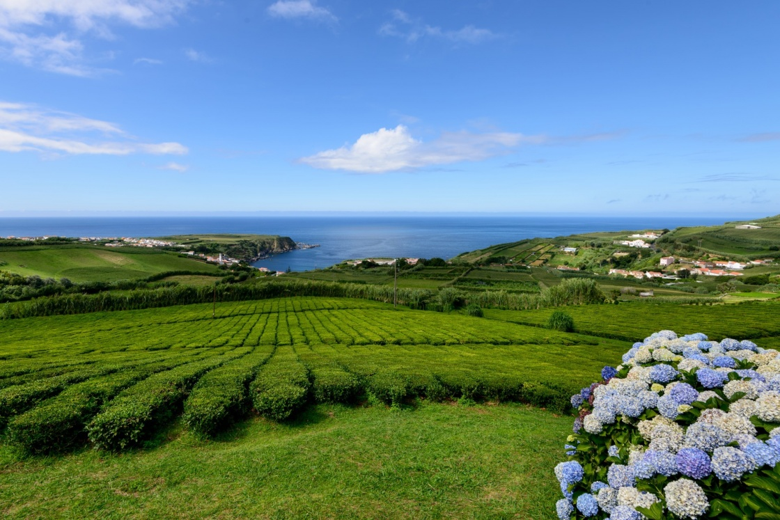 Azores Weather: all the seasons in one day!
